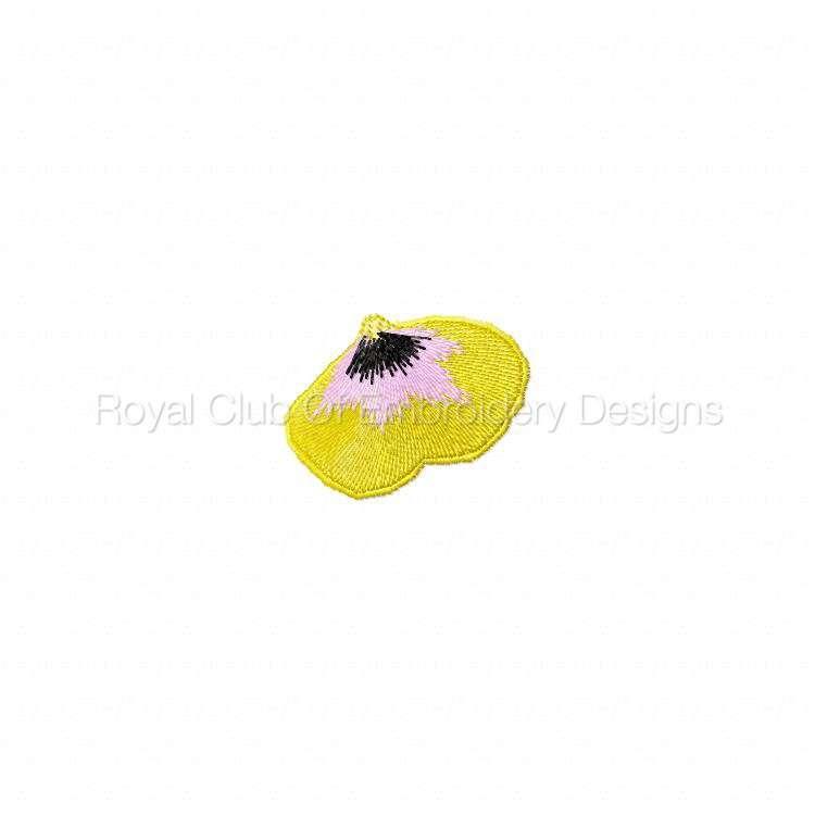 fslflowers_11.jpg