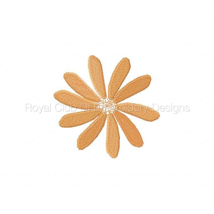 fslflowers_33.jpg