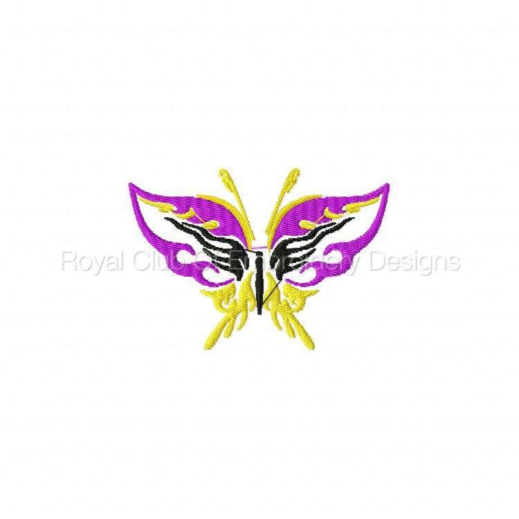 galaticbutterflies_04.jpg