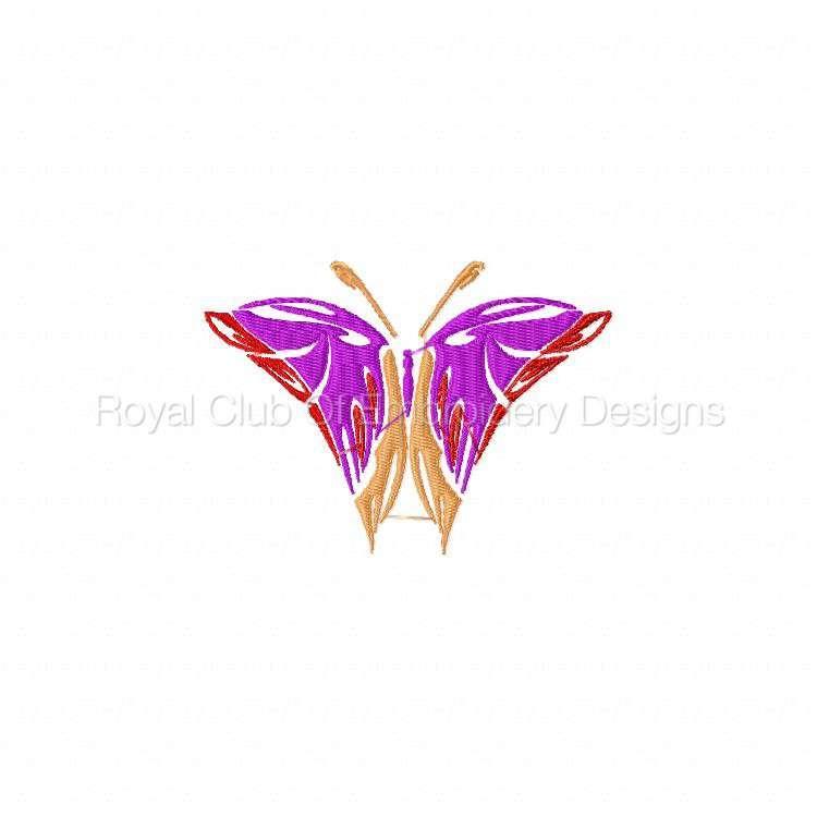 galaticbutterflies_07.jpg