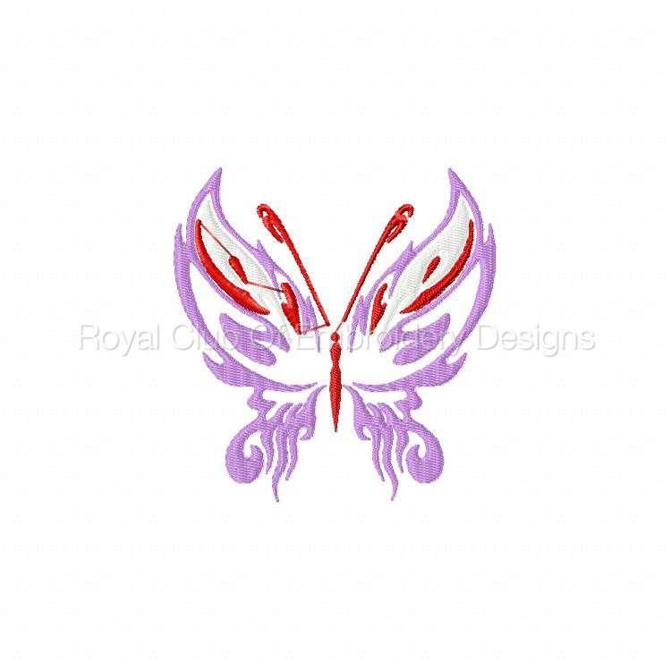galaticbutterflies_08.jpg