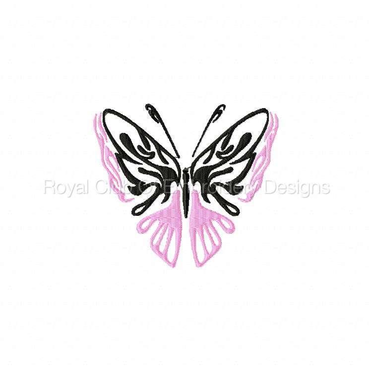 galaticbutterflies_10.jpg