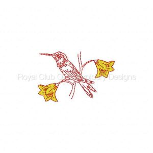 Royal Club Of Embroidery Designs - Machine Embroidery Patterns Hummingbirds and Flowers Set