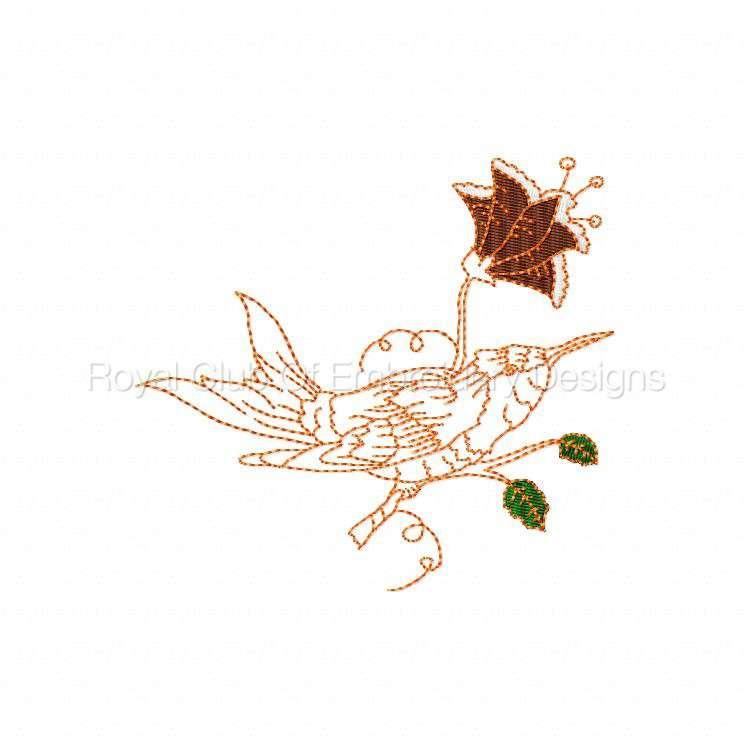 humbirdsnflowers_06.jpg