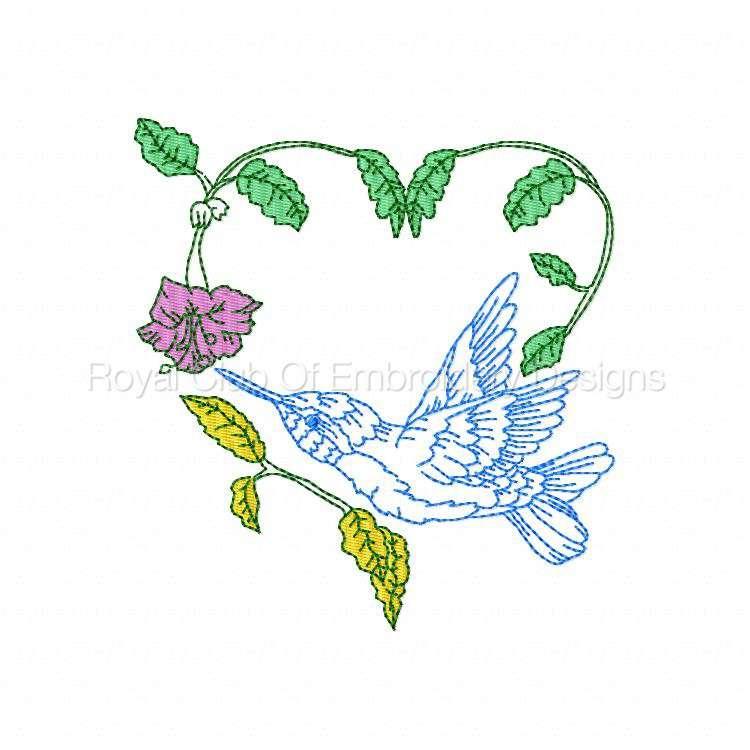 humbirdsnflowers_08.jpg