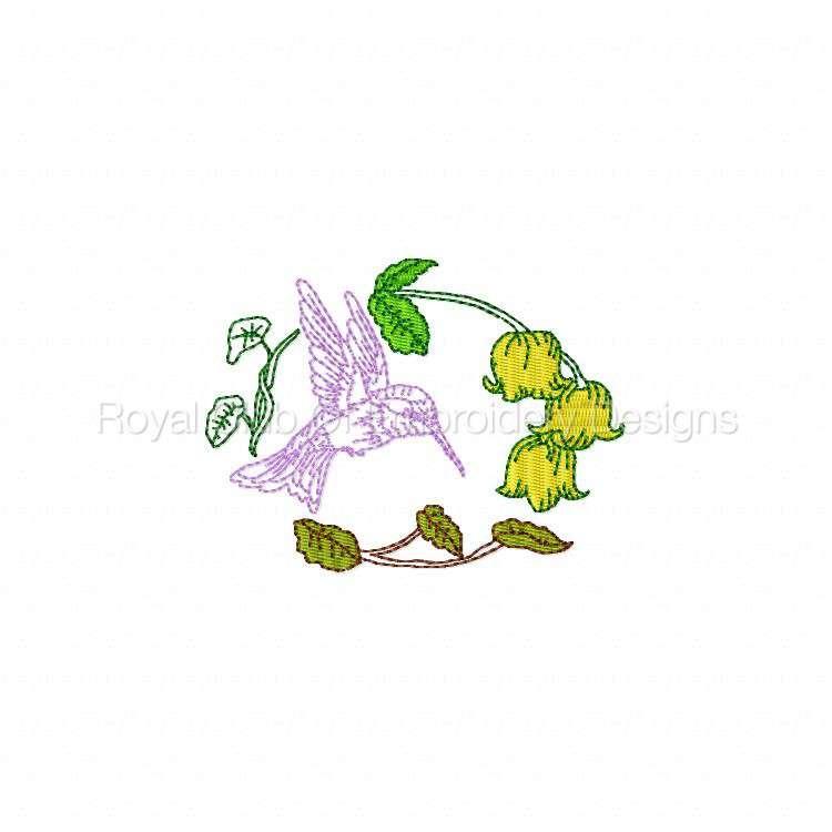 humbirdsnflowers_11.jpg