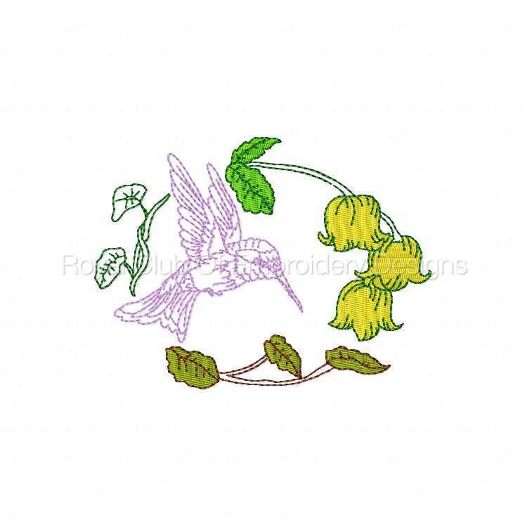 humbirdsnflowers_12.jpg