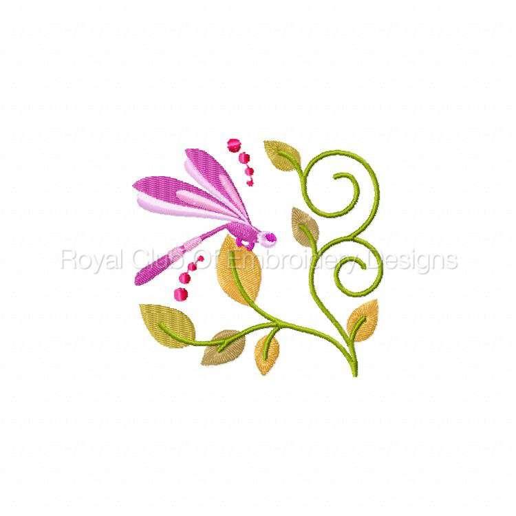 jacobeandragonflies_03.jpg