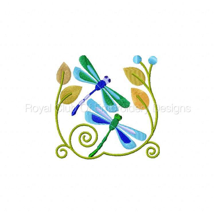jacobeandragonflies_04.jpg