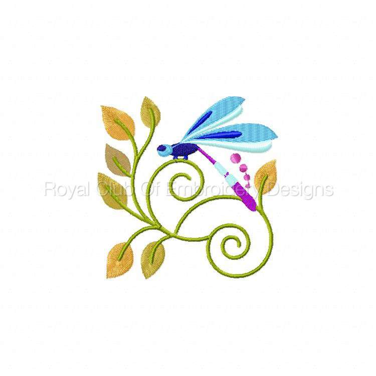 jacobeandragonflies_06.jpg