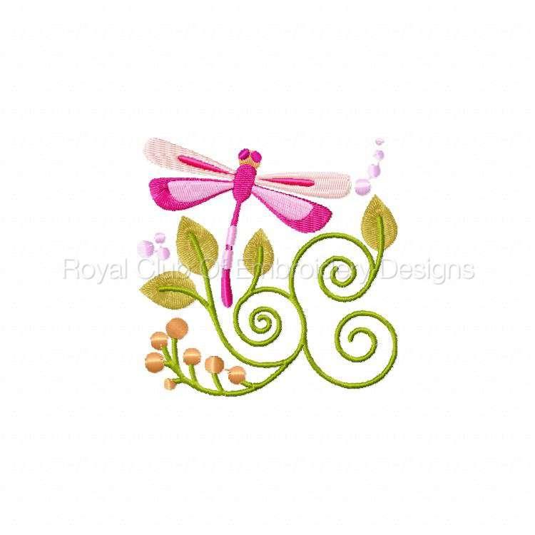 jacobeandragonflies_10.jpg