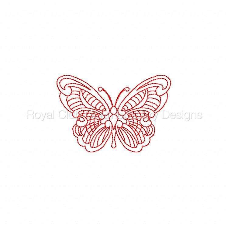 jnbutterflies2_04.jpg