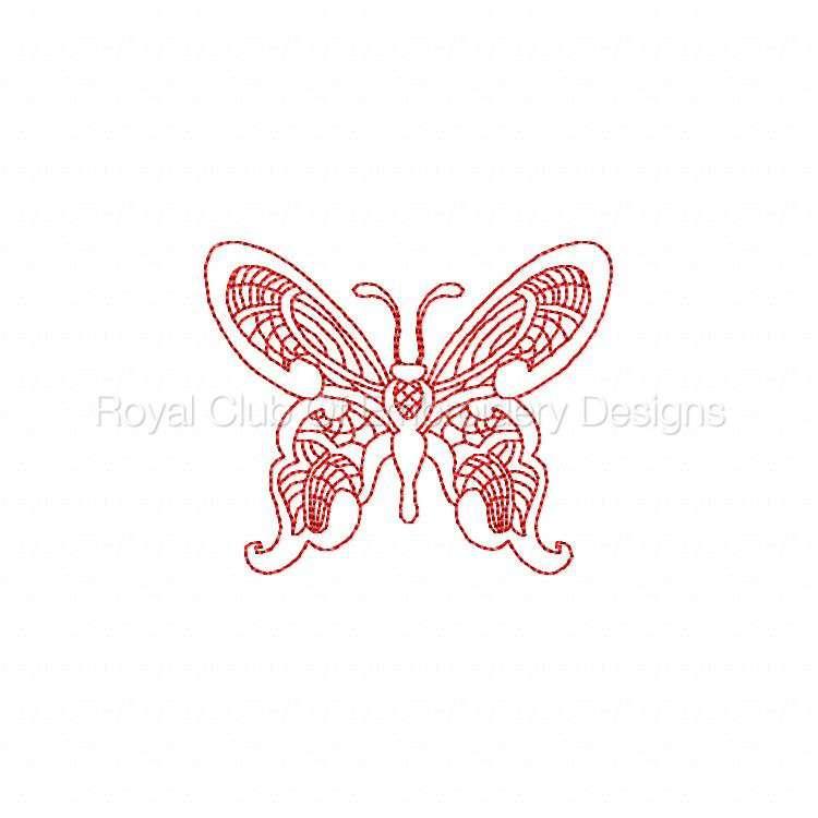 jnbutterflies2_07.jpg