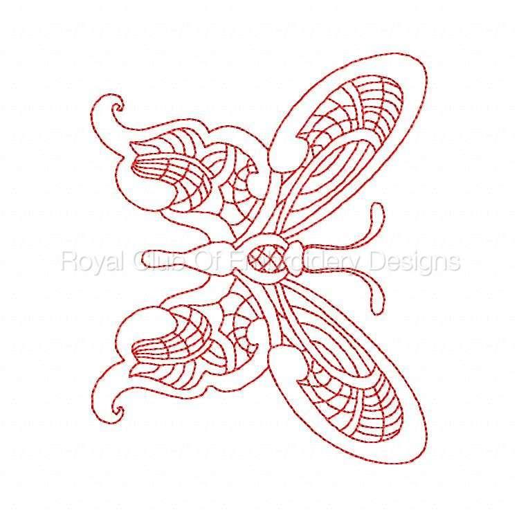 jnbutterflies2_08.jpg