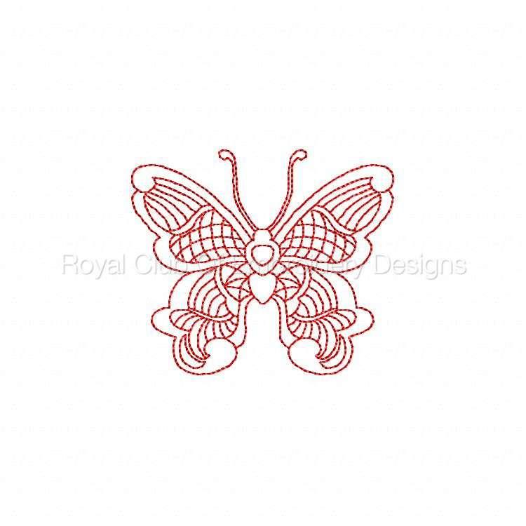 jnbutterflies2_10.jpg