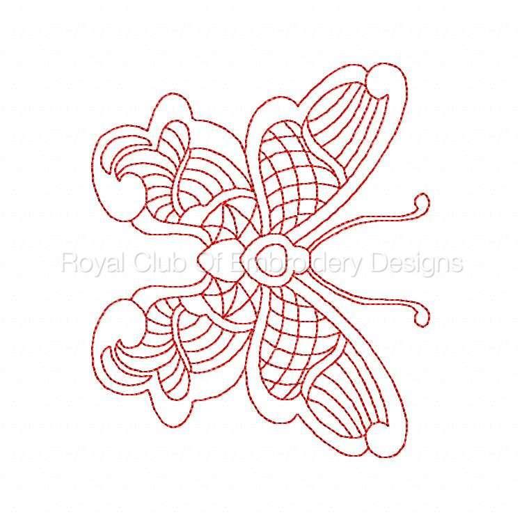 jnbutterflies2_11.jpg