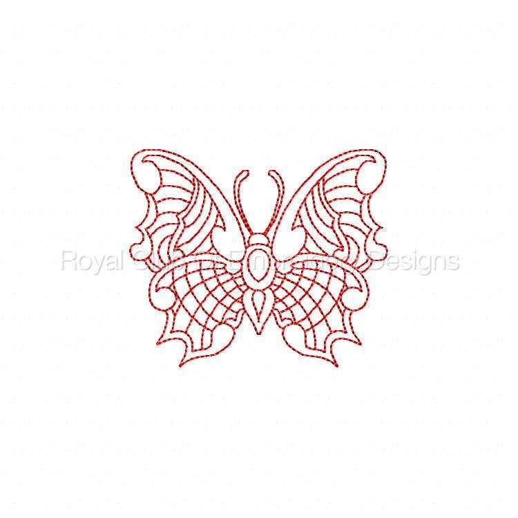 jnbutterflies2_13.jpg