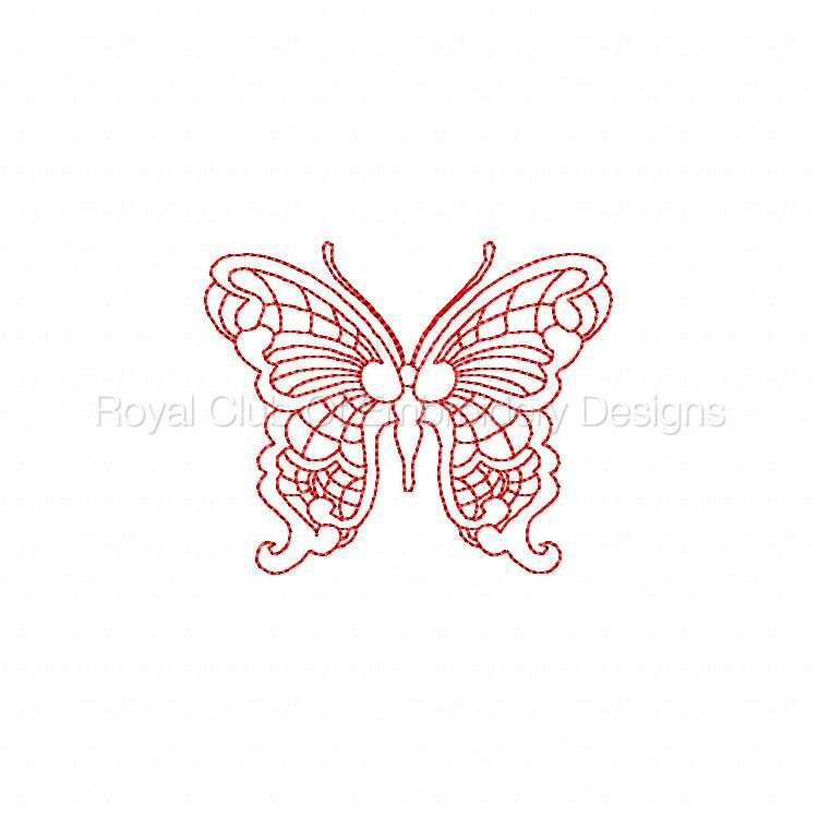 jnbutterflies2_19.jpg