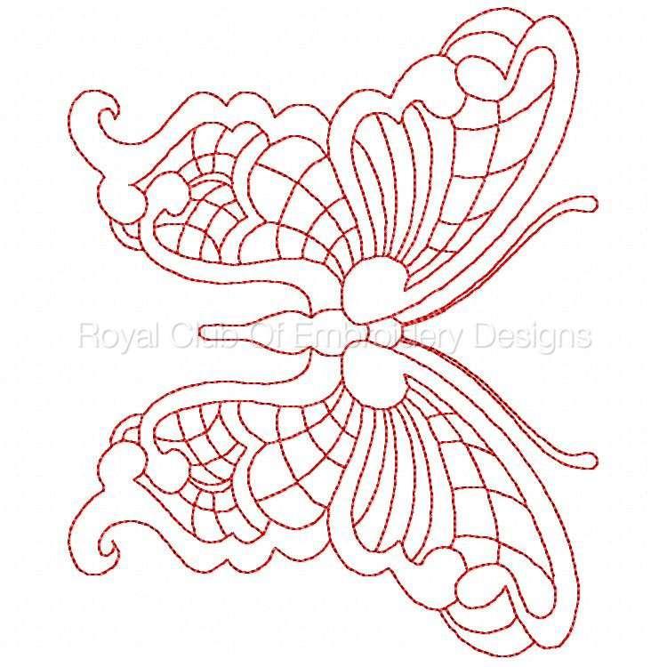 jnbutterflies2_21.jpg