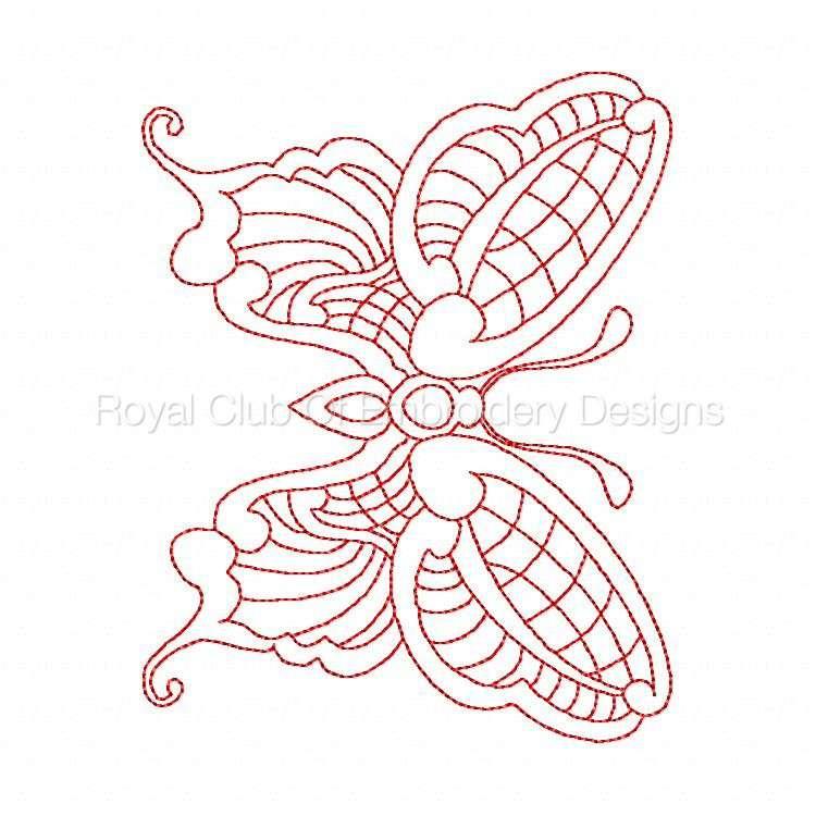 jnbutterflies2_23.jpg