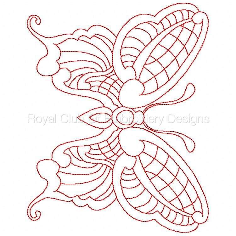 jnbutterflies2_24.jpg