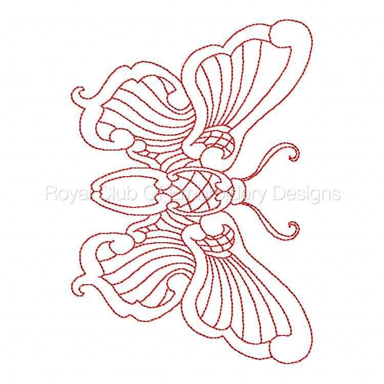 jnbutterflies2_26.jpg