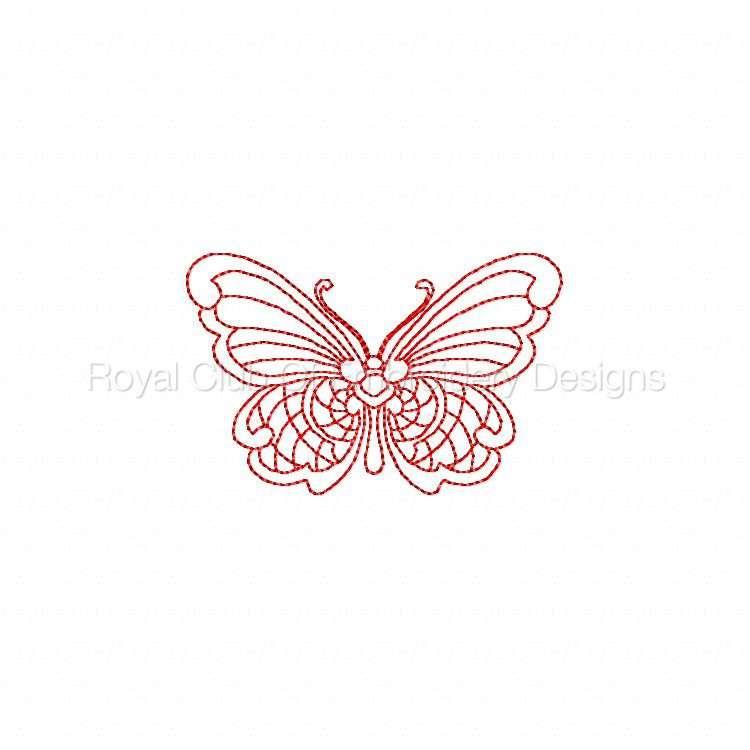 jnbutterflies2_28.jpg