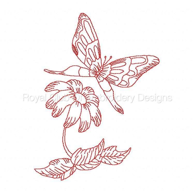 jnbutterflies_03.jpg