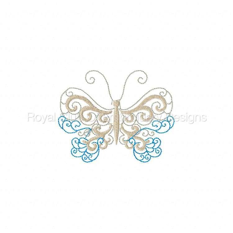 lacybutterflies_1.jpg