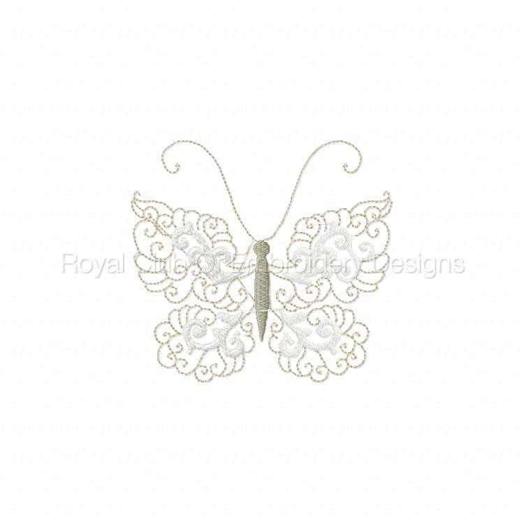 lacybutterflies_3.jpg