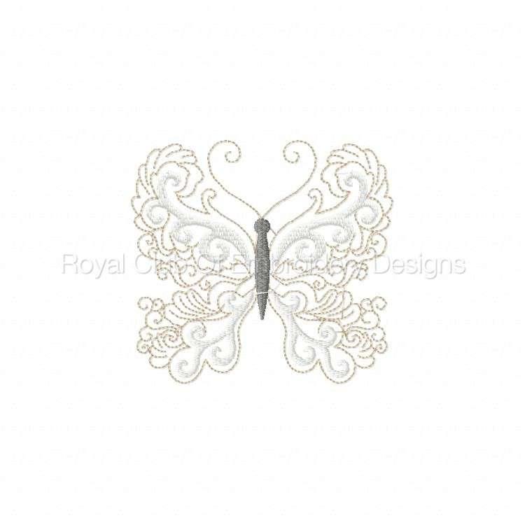 lacybutterflies_5.jpg