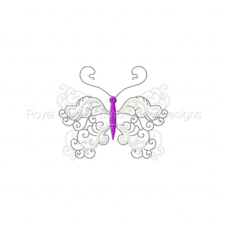 lacybutterflies_9.jpg