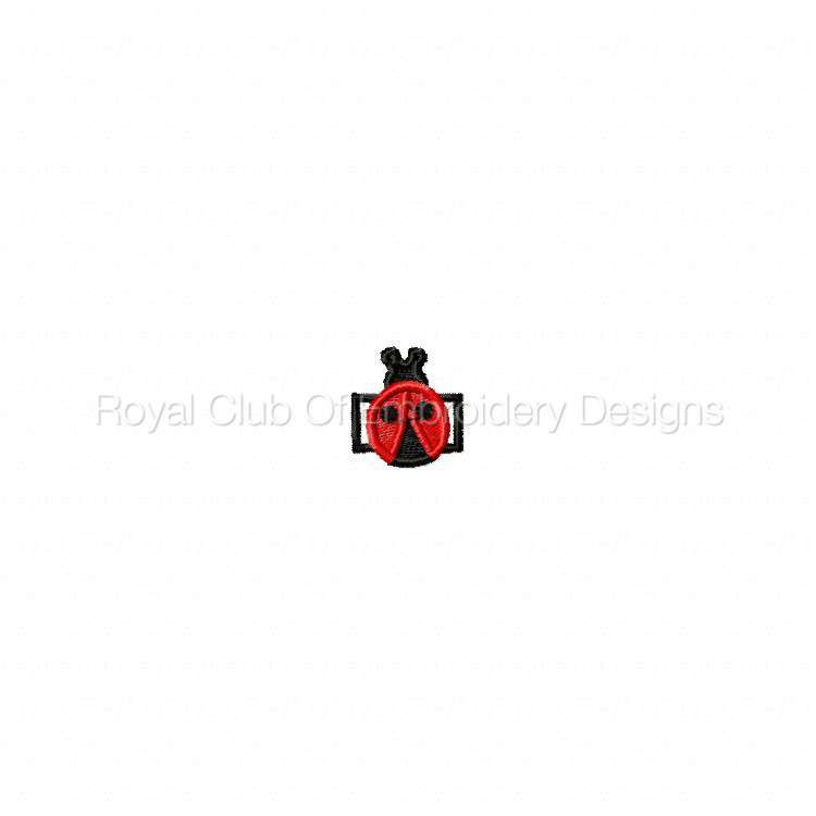 ladybug_03.jpg