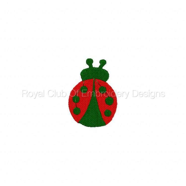ladybug_07.jpg