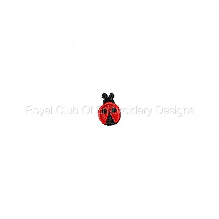 ladybug_08.jpg