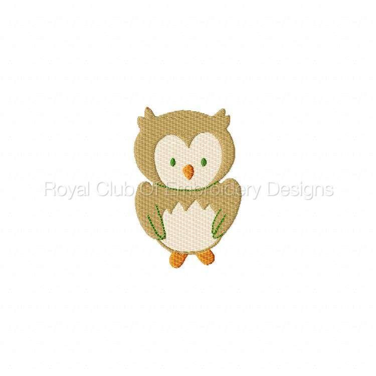 owlscenes2_10.jpg