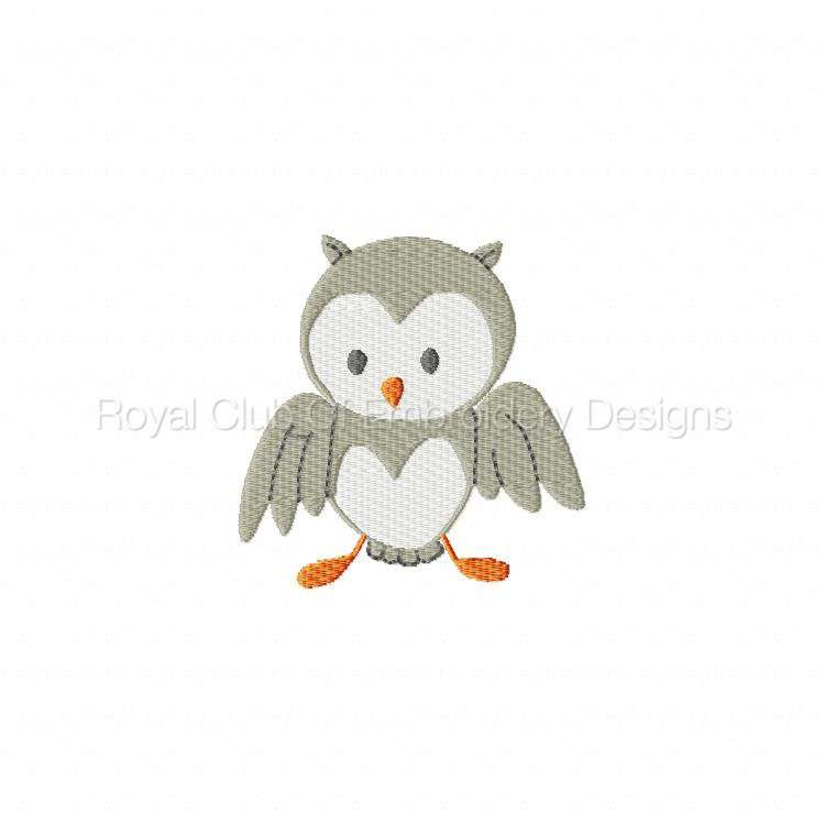 owlscenes_06.jpg