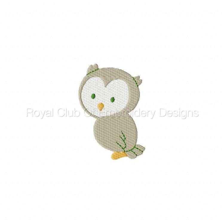 owlscenes_08.jpg