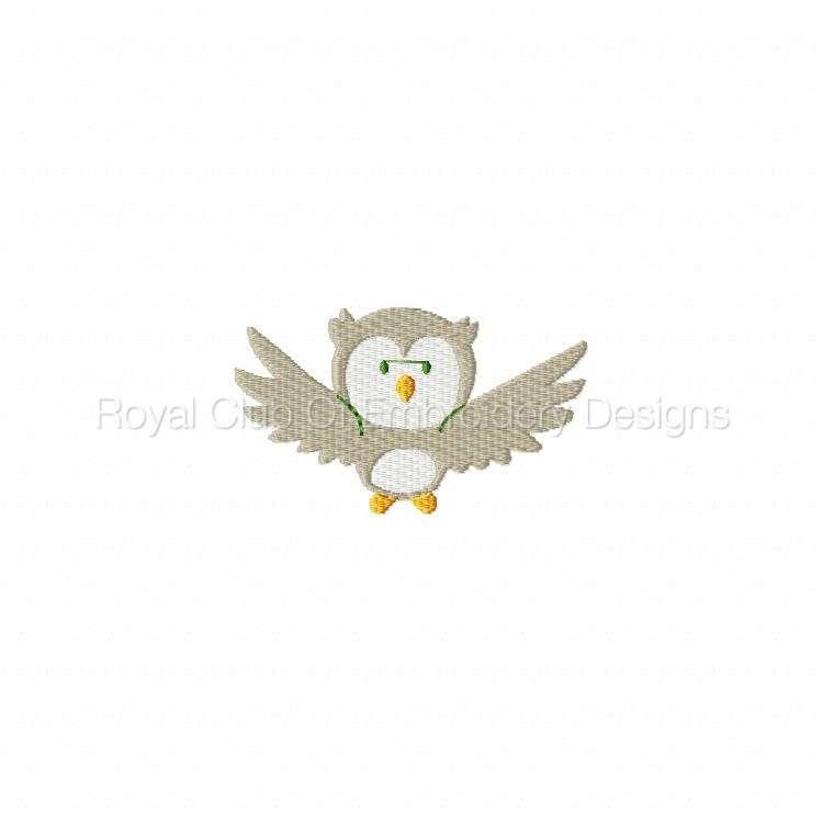 owlscenes_10.jpg