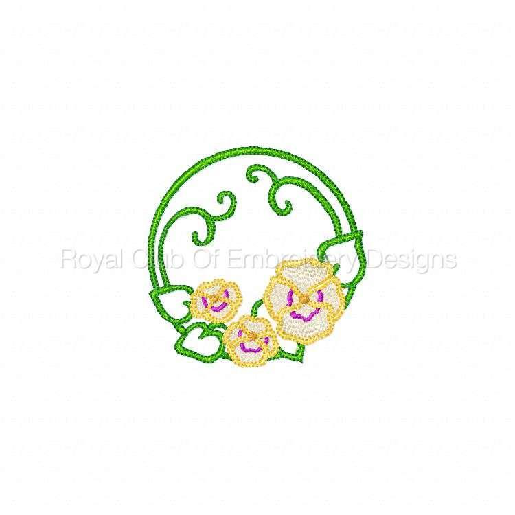 pansiescircles_02.jpg