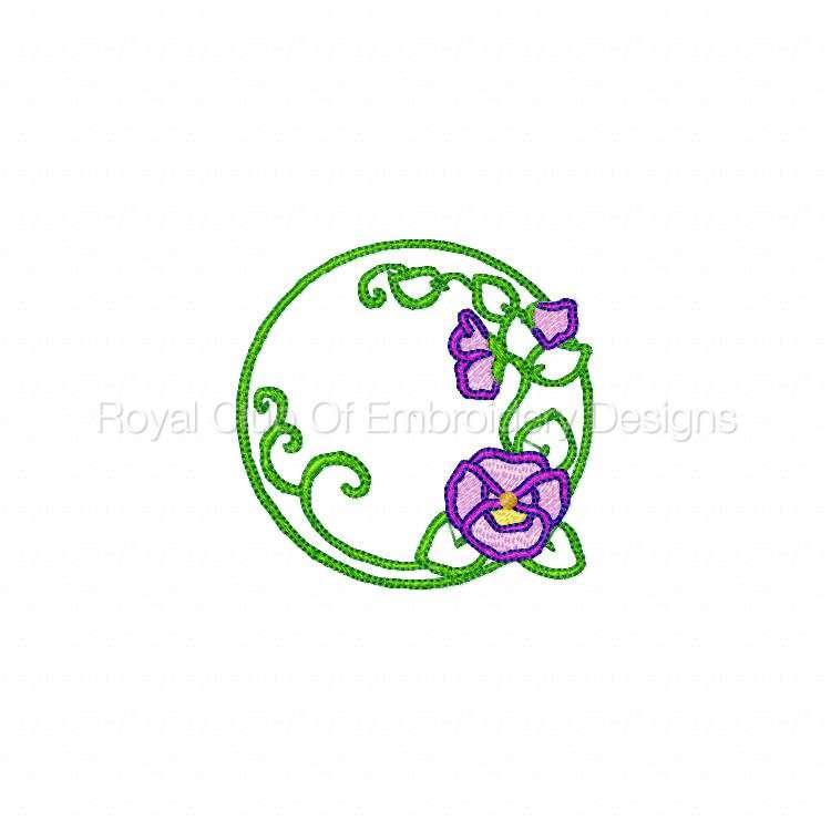 pansiescircles_04.jpg