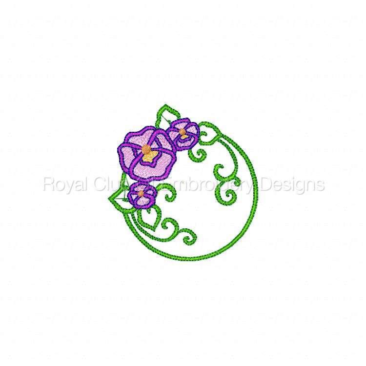 pansiescircles_05.jpg