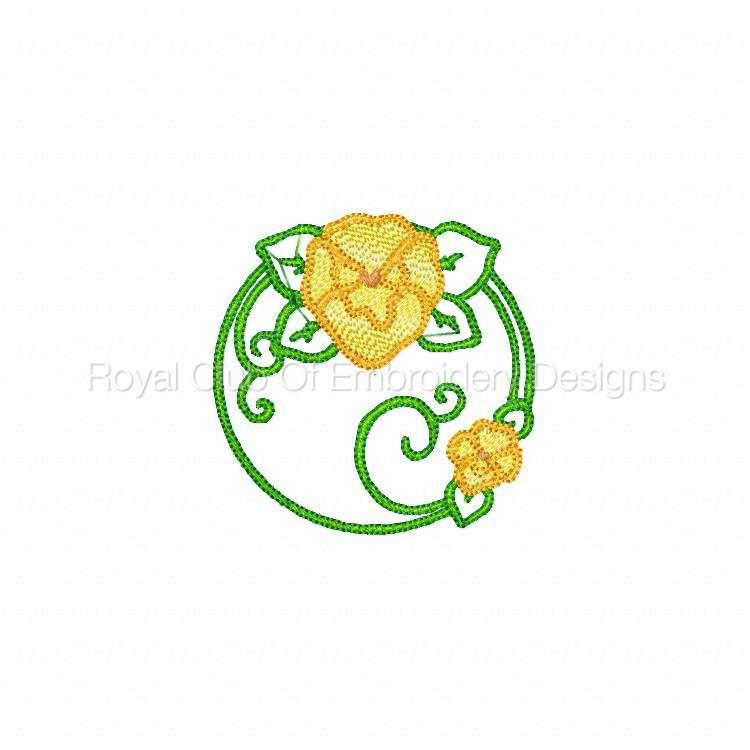 pansiescircles_07.jpg