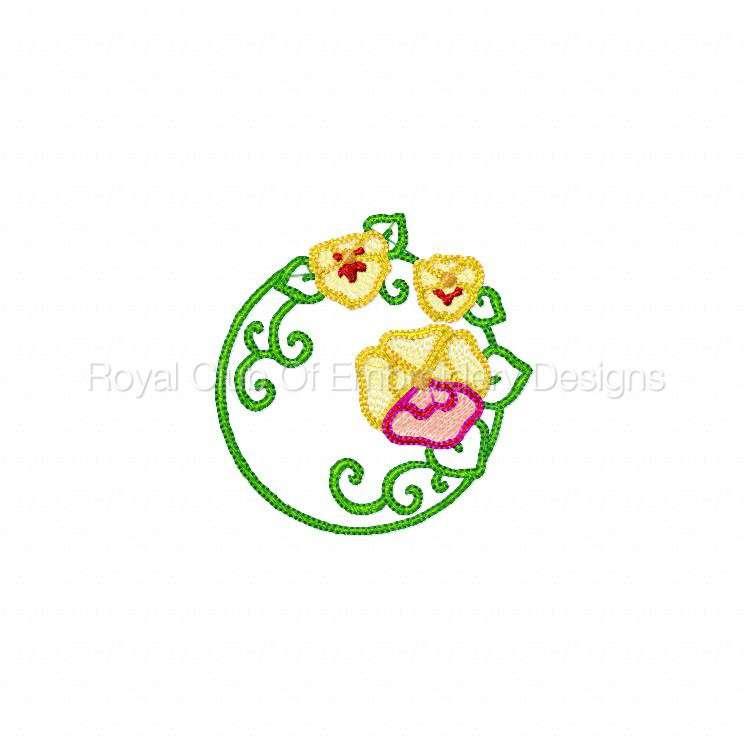 pansiescircles_10.jpg