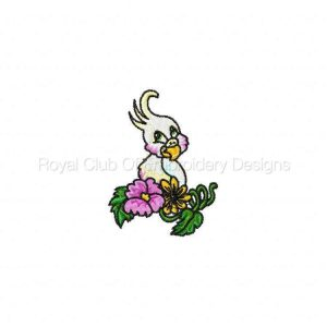 Royal Club Of Embroidery Designs - Machine Embroidery Patterns Parrot Palooza Set
