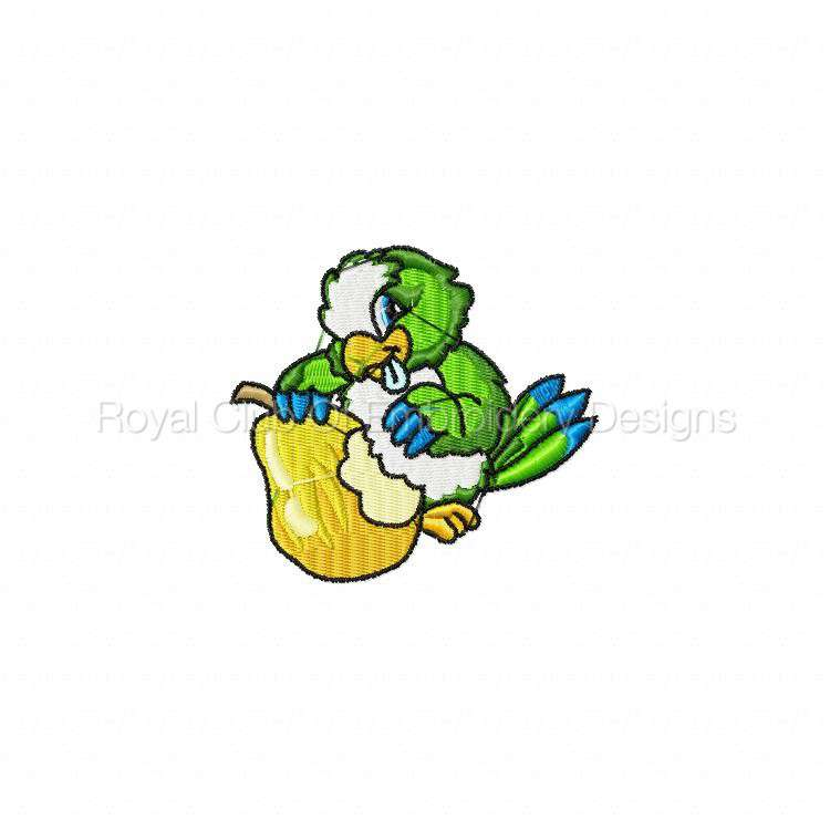 parrotpalooza_06.jpg