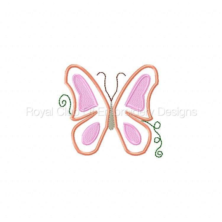 pfbutterflies_02.jpg