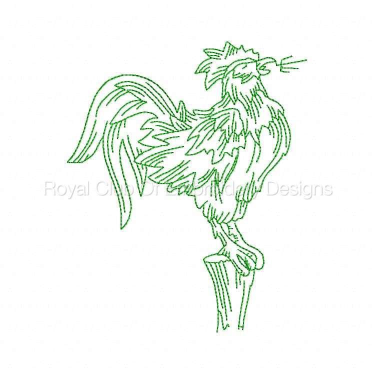 rooster_01.jpg