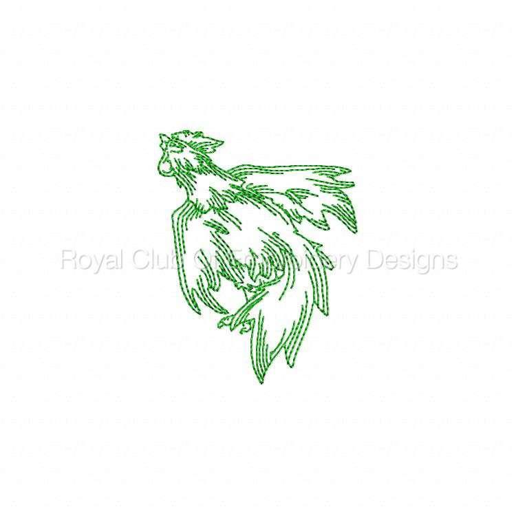 rooster_12.jpg