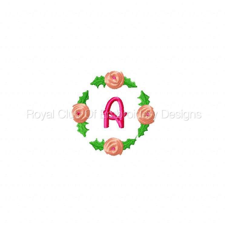 rosebudalpha_02.jpg